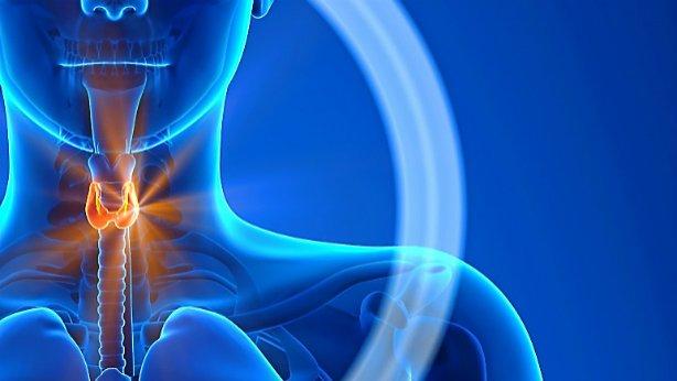 Hipotiroidismo: la disfunción más habitual